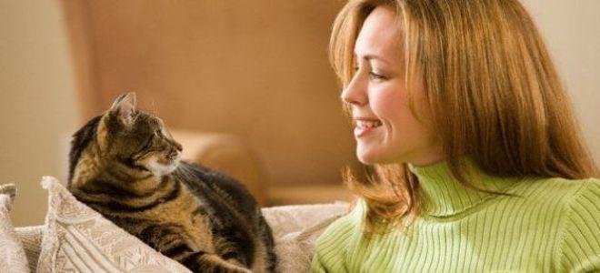 Какой ты хозяин для своей кошки