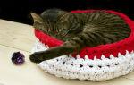 Как сделать лежанку для кошки своими руками