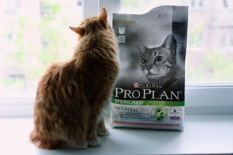 Корм для кошек Проплан