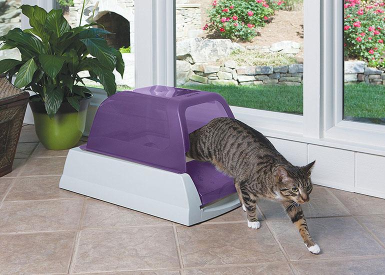 Как пользоваться наполнителем для кошачьего туалета