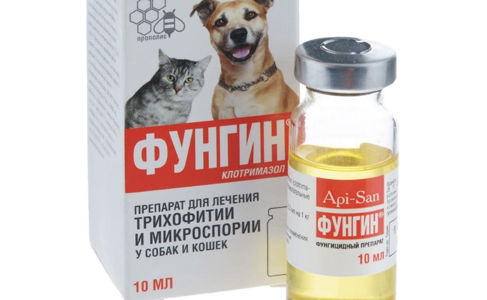 Мази для кошек от лишая: разновидности, инструкция по применению
