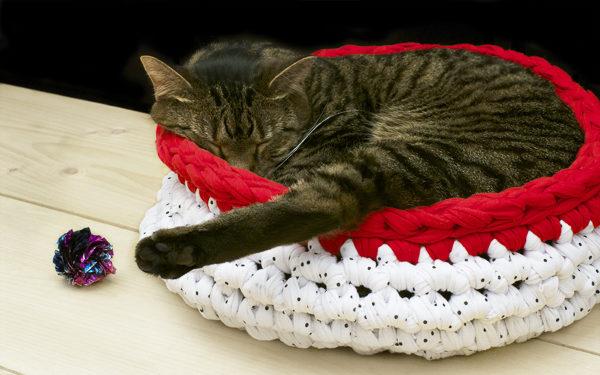 Как для кошки сделать лежак